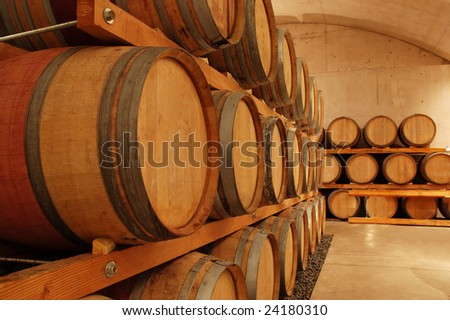 row of wine barrels in an old cellar