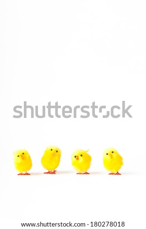 Row of 4 yellow easter chicks - stock photo