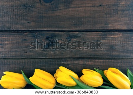 Row of yellow tulips on dark rustic wooden background. Spring flowers. Spring background. Valentine's Day and Mother's Day background. Top view. - stock photo
