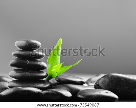 row zen stones and bamboo leaf on the black - stock photo
