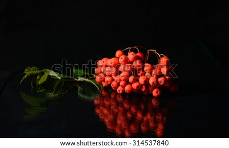 Rowan berries and a green leaf reflecting on a glass surface with black background