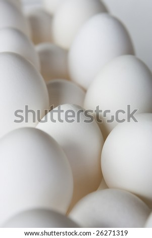 Rows of chicken eggs on softly lit white background and side lighting on subject. Critical focus on center egg in lower middle. - stock photo