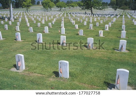 Rows of Gravestones, Los Angeles, California