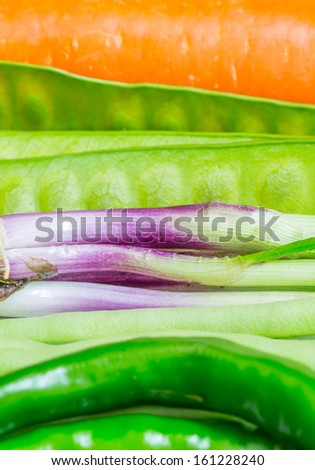 Rows of mixed vegetables - stock photo