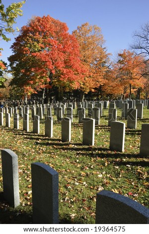 Rows of soldier tombstones on grassy field sprinkled with leaves with red maple trees in background contrasting against blue fall skies
