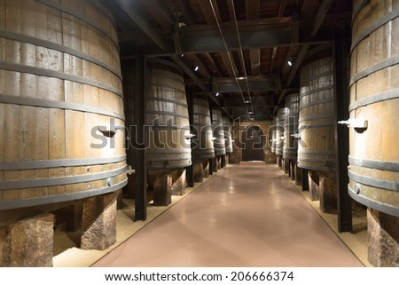 Rows of vertical large wooden barrels in old cellar - stock photo