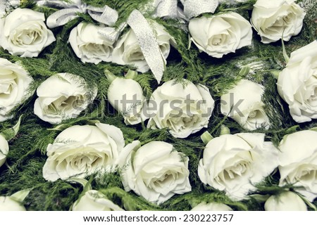 Rows of white rose boutonniere for wedding entourage