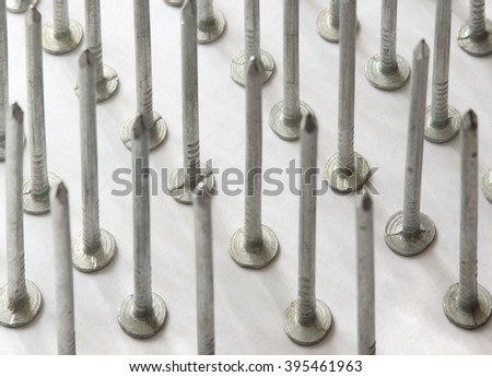 Rows of zinc coated nails  on white background. Team work concept.