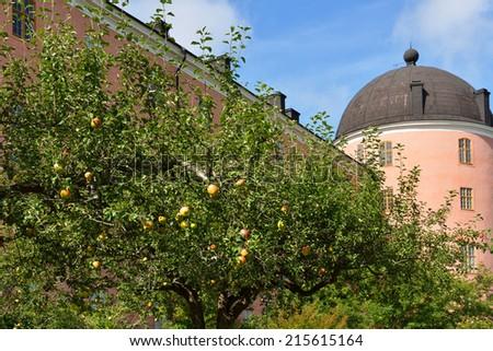 Royal apple on background of Uppsala Castle Tower, Sweden  - stock photo