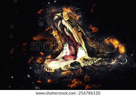 Royal boa, opens mouth. Fire illustration - stock photo