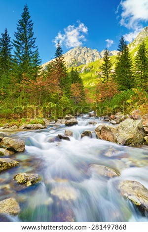 Roztoka Stream in Roztoka Valley. Tatra National Park. High Tatras, Carpathian Mountains. Nature reserve. Poland - stock photo