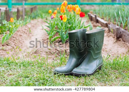 Rubber boots on grass - spring  and summer concept