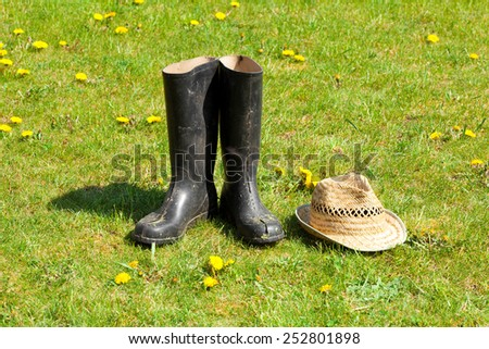Rubber boots with straw on grass background. - stock photo