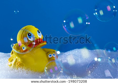 rubber duck family - stock photo