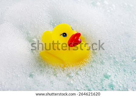 Rubber duck in foam close-up - stock photo