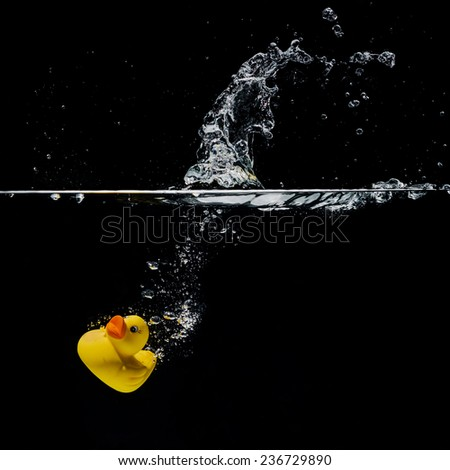 rubber duck under water - stock photo
