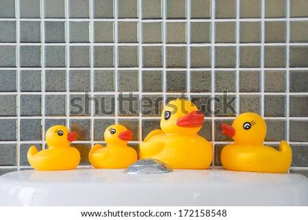 Rubber ducks - stock photo