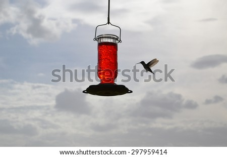 Ruby -Throated Hummingbird at feeder against blue sky with clouds - stock photo
