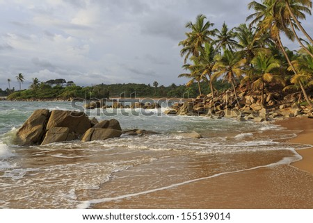 Rugged coastline with rock and palm trees in Axim, Ghana - stock photo