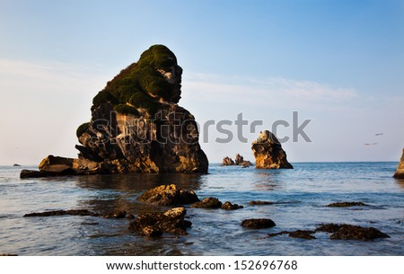 Rugged rock with a mossy cap on the ocean shore - stock photo