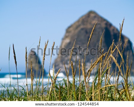 Rugged Rocky Beach on the Oregon Coast featuring Haystack Rock - stock photo