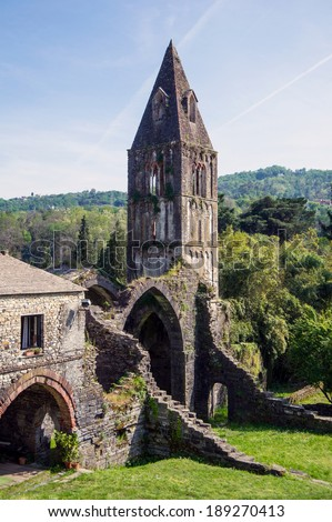 ruins of an old abbey suspended in time