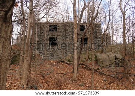Ruins Of An Old Mansion In The Woods