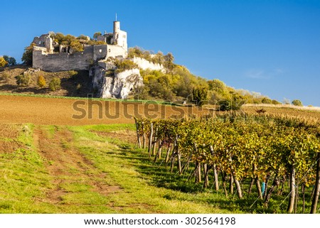 ruins of Falkenstein Castle with vineyard in autumn, Lower Austria, Austria - stock photo