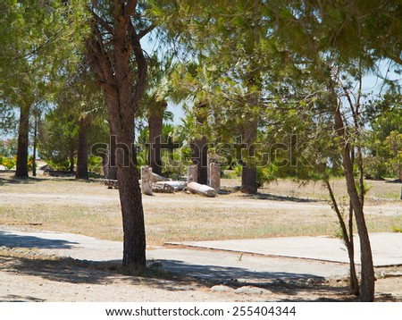 Ruins of the ancient temple columns under green trees in Hierapolis - stock photo