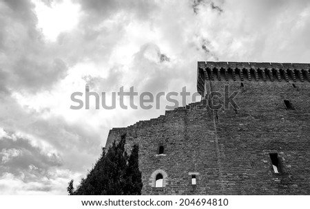 Ruins of the medieval castle and cypress tree before a storm. (Chateauneuf du Pape, Provence, France) Nature and architecture background. Aged photo. Black and white.
