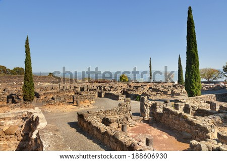 Ruins of the synagogue of Capernaum, Israel - stock photo