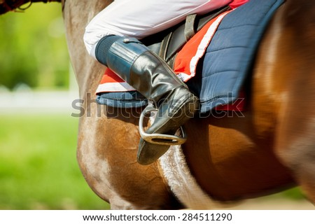 runing  thoroughbred race horse with jokey on it in sunny spring day detail - stock photo