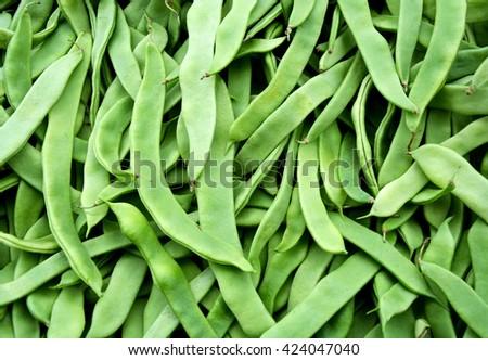 Runner green beans for sale - stock photo