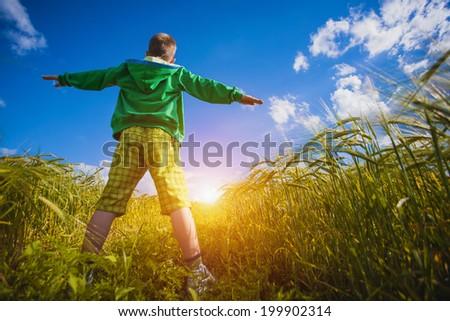 Running little happy kid  meadow weat field - stock photo