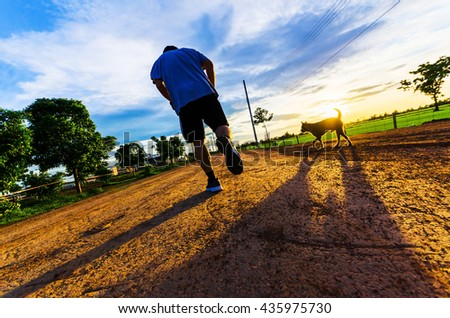 Running man silhouette in sunset time with pet - stock photo