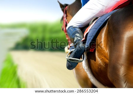 running racing thoroughbred horse coming first on hippodrome racetrack detail - stock photo