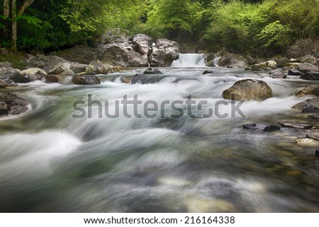 Running stream in the French Pyraneese - stock photo