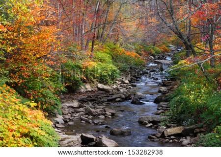 Running water stream - stock photo