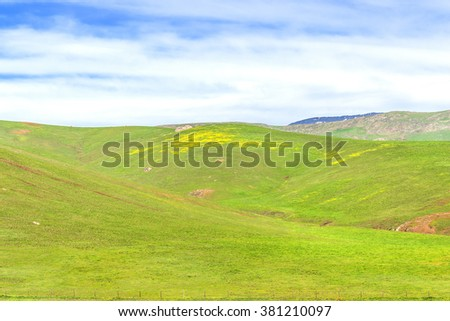 Rural coastal hills / mountains, blue sky, white clouds, & green meadows, grass, & fields, on the Big Sur coast, California Central Coast, near Cambria CA.