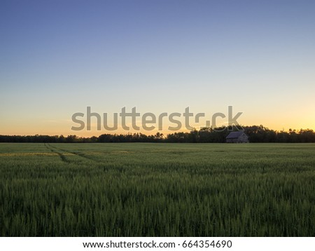 Rural Country Field Sunset