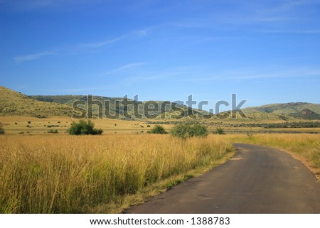 Rural country road in South Africa (Pilanesburg National Park) - stock photo
