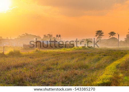 rural countryside landscape sunset