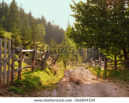 Rural dirt road along the old wooden fence and forest high up in Carpathian mountains - stock photo