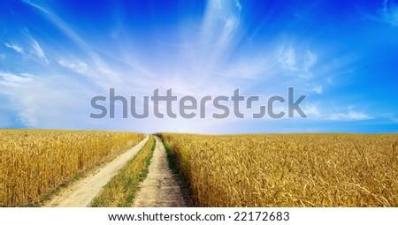 Rural dirt road through the field - stock photo