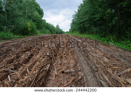 Rural empty dirty wet road with deep tire tracks and piles of woody debris - stock photo