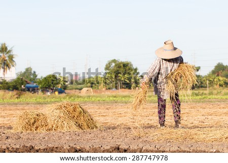 Rural farmer with haystack prepare for agriculture-5 - stock photo