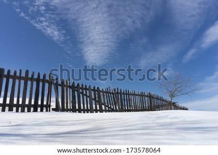 Rural fence in winter with single tree and blue sky - stock photo