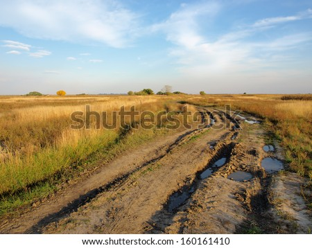 Rural field and dirt road - stock photo