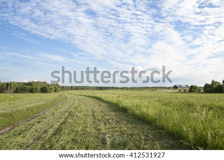 Rural field on a Sunny day.