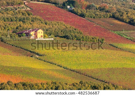 Rural house among autumnal vineyards in Piedmont, Northern Italy.